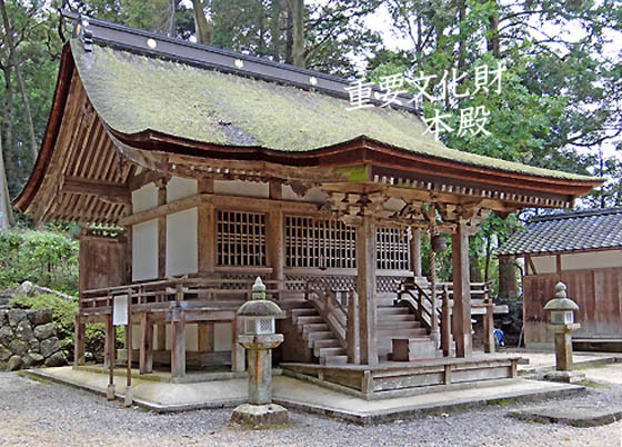 ディアボロの大冒険 Wiki - wikiwiki.jp